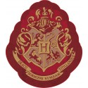 Coussin Harry Potter Forme